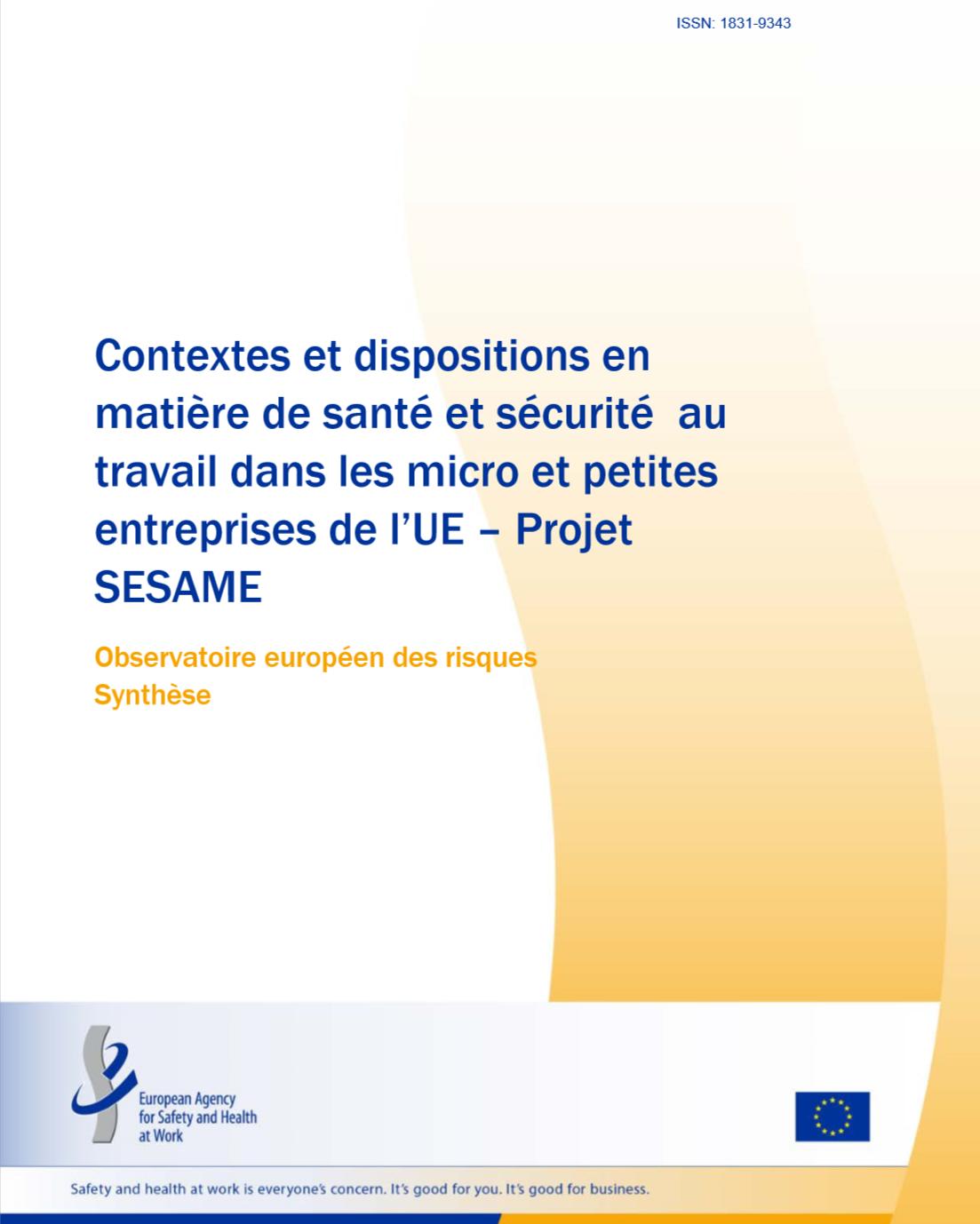 Micros et Petites entreprises (MPE) en Europe face à la S&ST